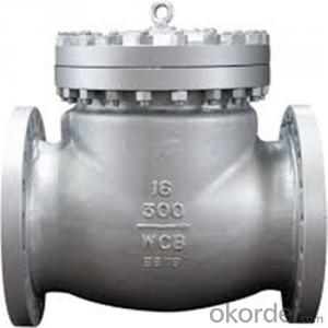 API Cast Steel Check Valve  125 mm   in Accordance with ISO17292、API 608、BS 5351、GB/T 12237