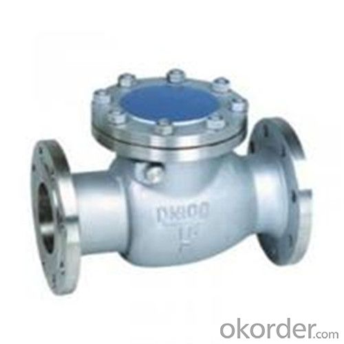 API Cast Steel Check Valve   750 mm in Accordance with ISO17292、API 608、BS 5351、GB/T 12237