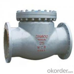 API Cast Steel Check Valve  600 mm  in Accordance with ISO17292、API 608、BS 5351、GB/T 12237