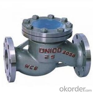 API Cast Steel Lift Check Valve Size 125 mm