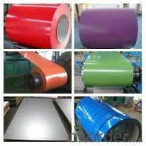 Color Coated Galvanized Steel Rolled/Color Steel Rolled