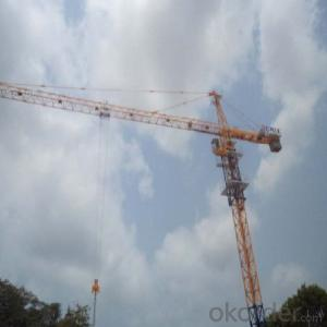 Tower Crane TC6016 Construction Machinery For Sale Crane Manufacture Crabe Accessory