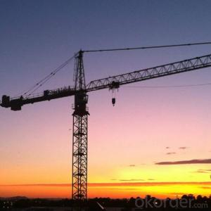 Tower Crane TC6014 Chinese Manufacturer 8T