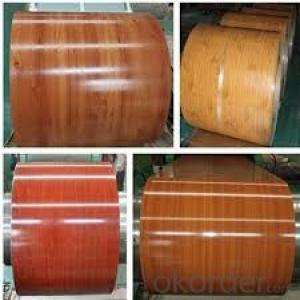 Color Coated Galvanized Steel Rolled for Floor
