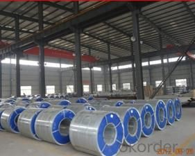 Hot-Dipped Galvanized Steel Coil for Building
