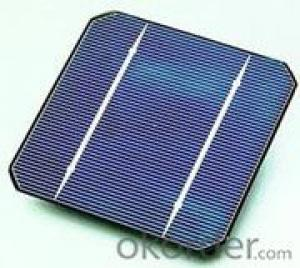 5 Inch A Grade 2BB Solar Cell  Cheap , Cell Solar