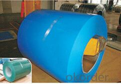 Prepainted Steel Coil with Matt Finish for Construction