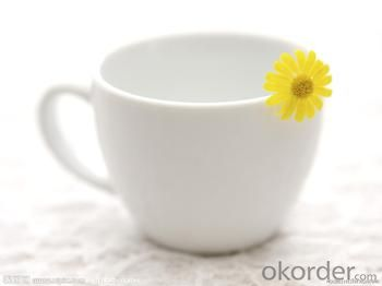 CUPS WITH LOWEST PRICE AND BEST QUALITY