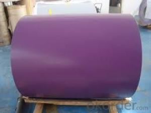 Prepainted Steel Coil/PPGI-Prepainted Galvanized Steel
