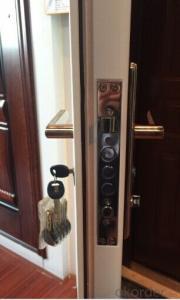 steel security door/Simple design high quality low price