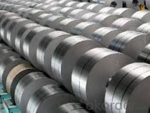 hot rolled steel coil -SAE1006 in Good Quality in China