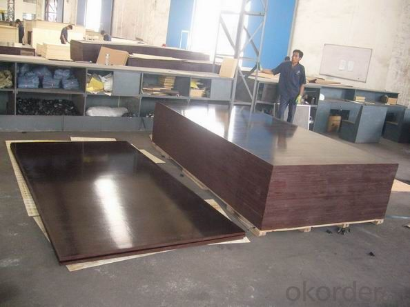 film faced plywood for construction with Melamine, WBP glue