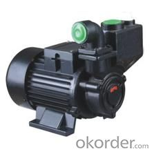 WZB-S Stainless Steel Vortical Self-priming Booster Pump