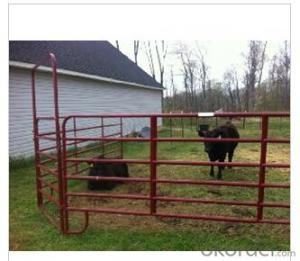 Cattle Panel with PVC Painting for Animals