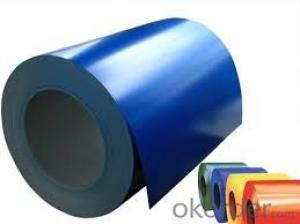 Prepainted Galvanized Rolled Steel Coil/Sheet-CS