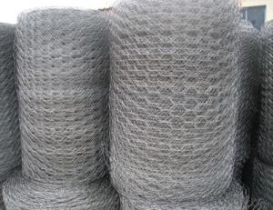 Stainless Steel Wire Mesh 304 316 SGS Certified