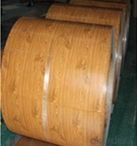Prepainted Galvanized Steel Coil Matt- Low Price