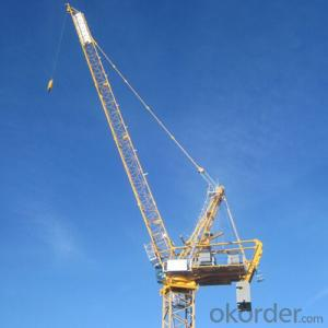 Luffing Tower Crane China Famous Manufacturer