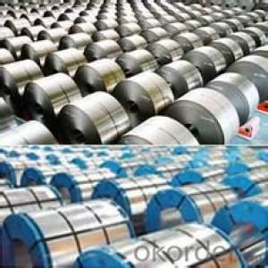 HOT-DIP GALVANIZED/ ALUZINC STEEL-CS in China