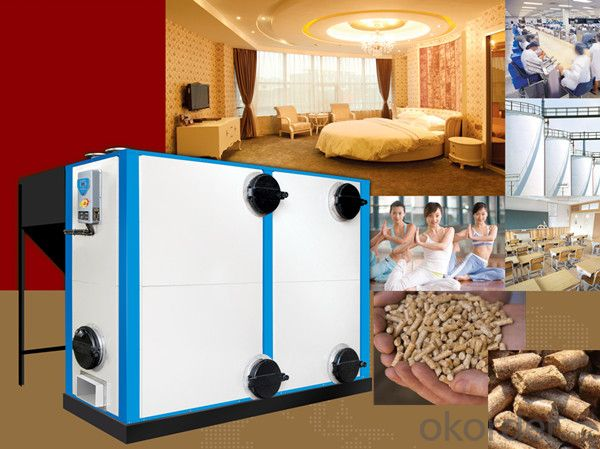Horizontal Biomass Hot Water Hrsg Boiler