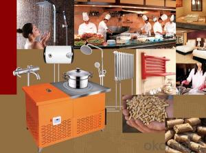 Multifunctional Biomass Pellet Cooking Stove