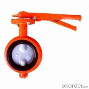 Butterfly Valve Manual Wafer Vlave PN10-16