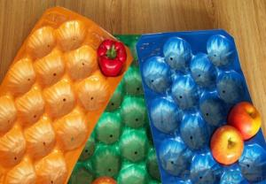 PP Fresh Fruit Tray Packing for Apple/Orange