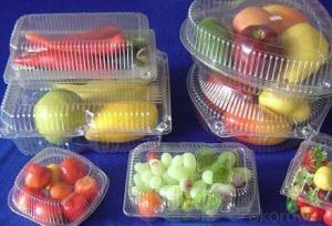 PP Plastic Fresh Fruit Packaging Tray Insert