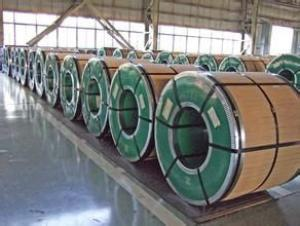 PPGI/Pre-painted Galvanized Steel for Roofing/Prepainted Galvanized Steel Coil