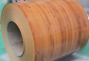 Prepainted Galvanized Steel Coil Matt- Low Price JIS