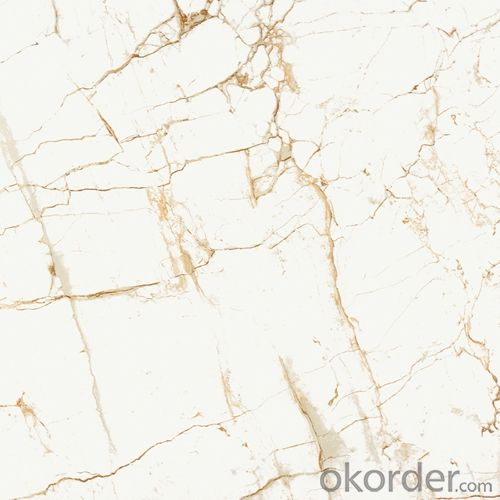 Full Polished Glazed Porcelain Tile 600 XD6B101