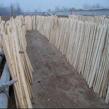 Wooden Broom Handle PVC Coated for Floor Broomstick
