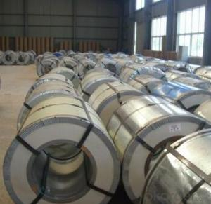 Prepainted Galvanized Steel Coil- Low Price ASTM