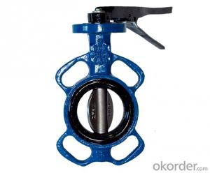 Butterfly Valve DN650 BS5163 Stardard Low Price