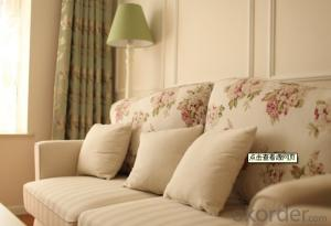 Cushion Pillow for Bedroom and Living Room Decoration