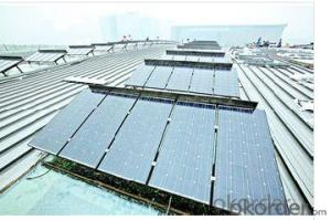 Solar Panel with High Quality and Best Price from CNBM