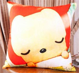 Cushion Pillow of 100% Cotton Material