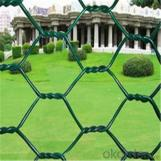 Hexagonal Wire Netting Galvanized and PVC Coated for Fence