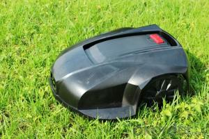 Robot lawn mower with remote control