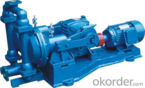 Electric Double Diaphragm Pump with High Quality