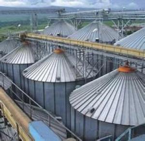 3000Ton-6000Ton Soya Bean Storage Steel Silo