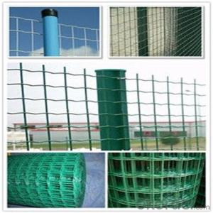 PVC Coated Wire Mesh Black /Yellow/ Green PVC with High Quality