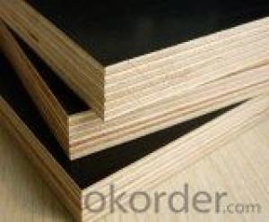film faced plywood poplar core or combi core wbp glue or mr E1/black or brown film