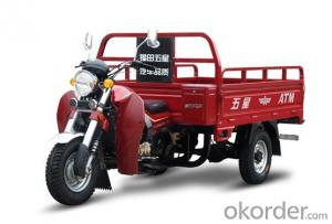 Three-wheel motor FT150ZH-LMlarge loading and good price