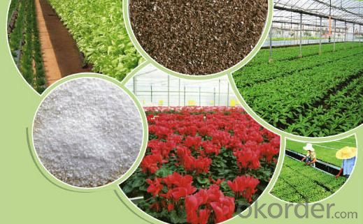Natural Agricultural Soil improvement vermiculite