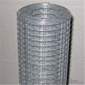 Galvanized Welded Wire Mesh for Fench or Machine Protection Cover