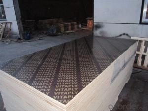 Brown Film Faced Plywood Phenolic Black FILM