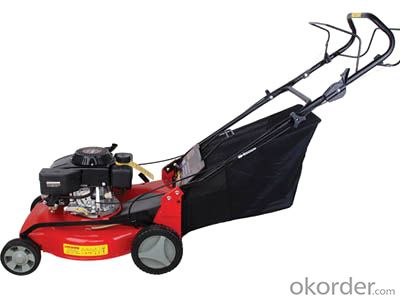 Lawn  Mover  PROFESSIONAL PETROL Glass Cutter hand push