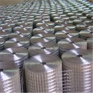Hot-dip Galvanized Welded Wire Mesh for Building/Construction Material