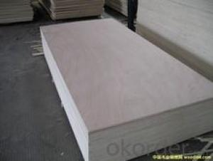 2.0MM 3.0MM Bleached poplar plywood for arts crafts and furniture usage